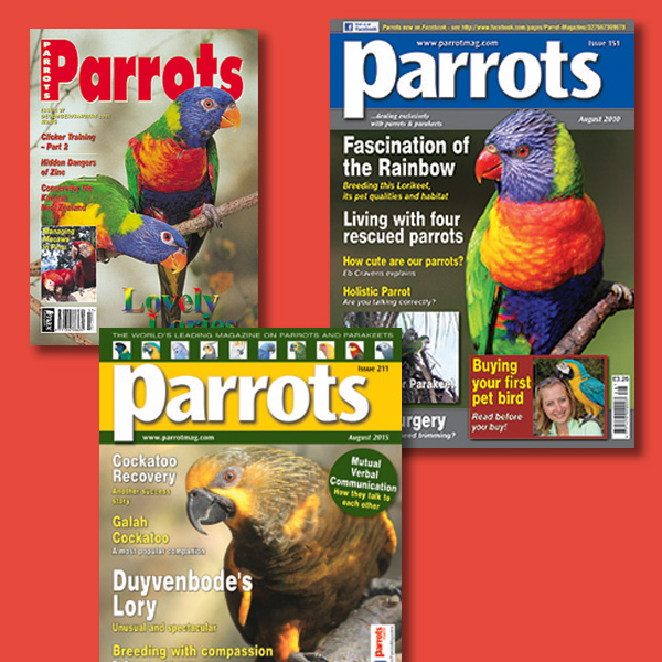 LoriesLorikeets back issues