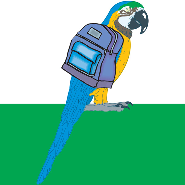 ParrotBackpack