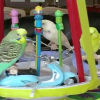 Performing Budgies