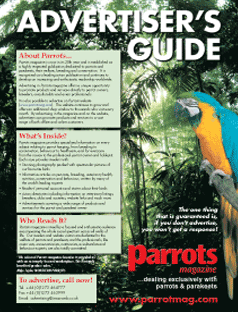 Advertiser's Guide front image