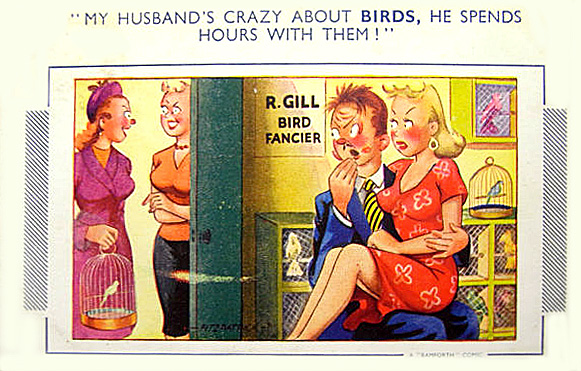 Bird fancier - comic postcard