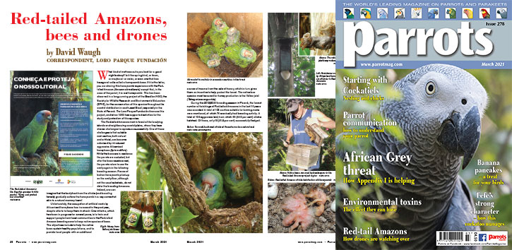 Spreads for web Parrots 278 4