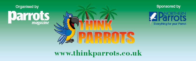 ThinkParrotsHeader