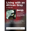 Living with an African Grey