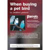 Buying a Pet Bird