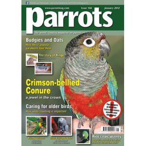 Parrots magazine, Issue 168