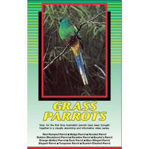 Land of Parrots - Grass Parrots